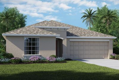 1754 Broad Winged Hawk Drive Ruskin FL 33570