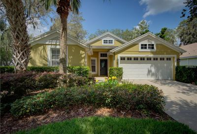6125 Gannetwood Place Lithia FL 33547