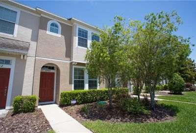 6984 Towering Spruce Drive Riverview FL 33578