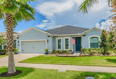 11022 Spring Point Circle Riverview FL 33579