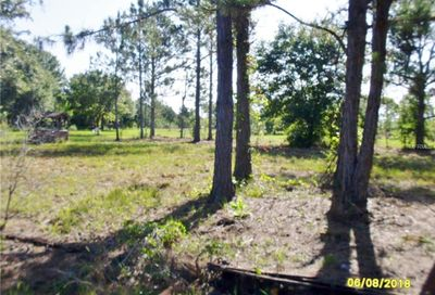 Tiger Lake Road Lake Wales FL 33898