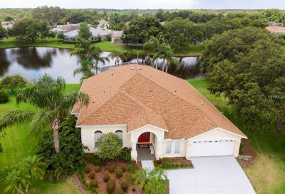 9140 Demaret Court New Port Richey FL 34655