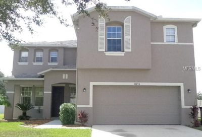 10450 River Bream Drive Riverview FL 33569