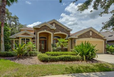 15741 Starling Water Drive Lithia FL 33547