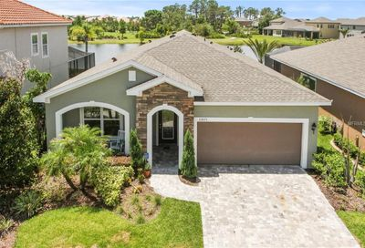 11871 Frost Aster Drive Riverview FL 33579