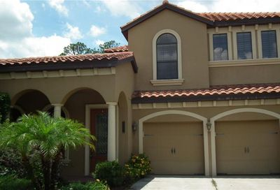 20334 Heritage Point Drive Tampa FL 33647