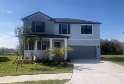 10601 Bahama Woodstar Court Riverview FL 33579