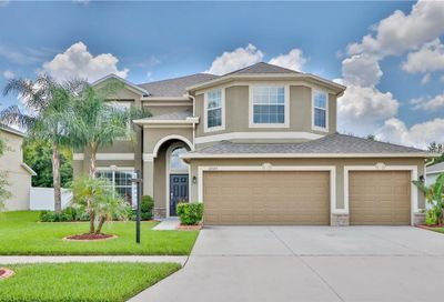12325 Prairie Valley Lane Riverview FL 33579