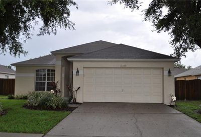 11303 Yeager Court Riverview FL 33578