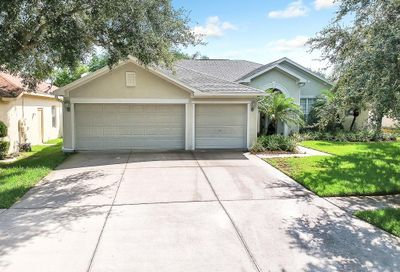 10910 Wildcat Drive Riverview FL 33579