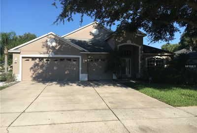 8919 Aberdeen Creek Circle Riverview FL 33569
