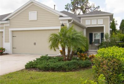 4049 Wildgrass Place Parrish FL 34219