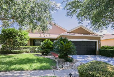 11009 Holly Cone Drive Riverview FL 33569