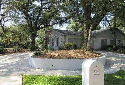 6303 Running River Place Temple Terrace FL 33617