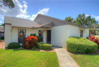 322 Windrush Loop Tarpon Springs FL 34689