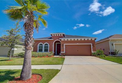 11226 Spring Point Circle Riverview FL 33579