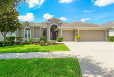 10755 Rockledge View Drive Riverview FL 33579