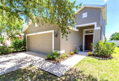 8523 Deer Chase Drive Riverview FL 33578