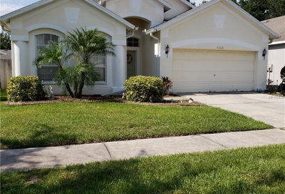 11112 Silver Dancer Drive Riverview FL 33579