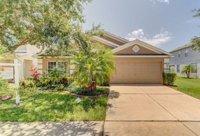 11410 Misty Isle Lane Riverview FL 33579