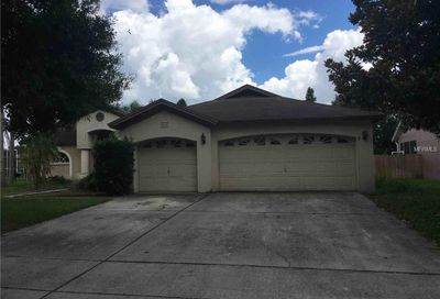 11807 Tall Elm Court Riverview FL 33569