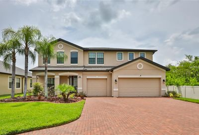 13217 Sunset Shore Circle Riverview FL 33579