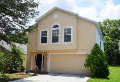 13825 Gentle Woods Avenue Riverview FL 33569