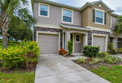 10419 Butterfly Wing Court Riverview FL 33578