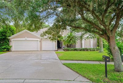 5909 Falconwood Place Lithia FL 33547