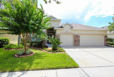 16412 Bridgewalk Drive Lithia FL 33547