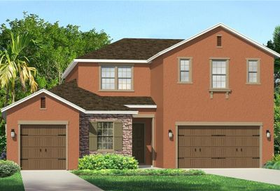 1689 Whitewillow Drive Wesley Chapel FL 33543