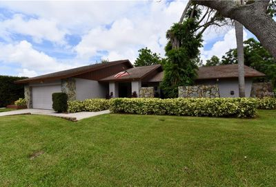 1177 Eniswood Parkway Palm Harbor FL 34683