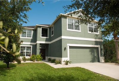 7556 Forest Mere Drive Riverview FL 33578