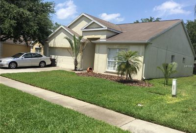 29643 Bright Ray Place Wesley Chapel FL 33543