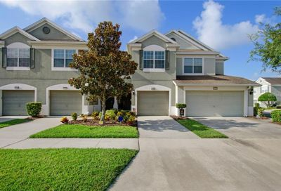 10205 Red Currant Court Riverview FL 33578
