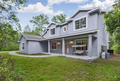 26438 Green Willow Run Wesley Chapel FL 33544