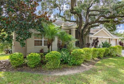 10106 Paddock Oaks Drive Riverview FL 33569