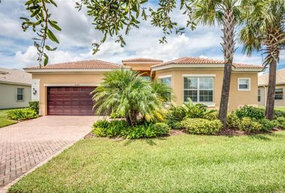 16207 Diamond Bay Dr Wimauma FL 33598