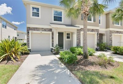 10413 Red Carpet Court Riverview FL 33578