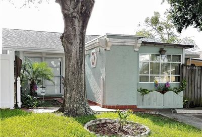 5012 Parkhill Place Tampa FL 33624