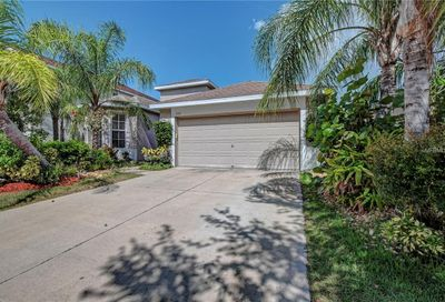 5212 Clover Mist Drive Apollo Beach FL 33572