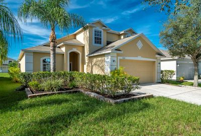 8209 Carriage Pointe Drive Gibsonton FL 33534