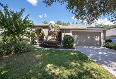 3912 Turkey Oak Drive Valrico FL 33596