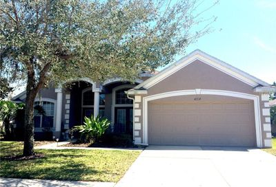 16533 Bridgewalk Drive Lithia FL 33547
