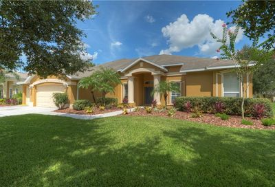 5716 Tanagerside Road Lithia FL 33547