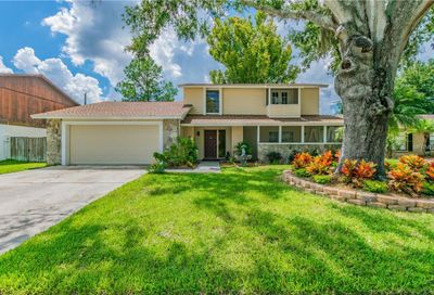 16524 Foothill Drive Tampa FL 33624