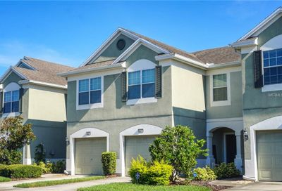 10238 Red Currant Court Riverview FL 33578