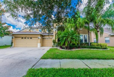 11512 Harlan Eddy Court Riverview FL 33579