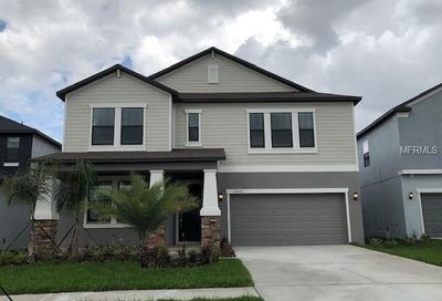10620 Great Cormorant Drive Riverview FL 33579