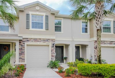 10425 Yellow Spice Court Riverview FL 33578